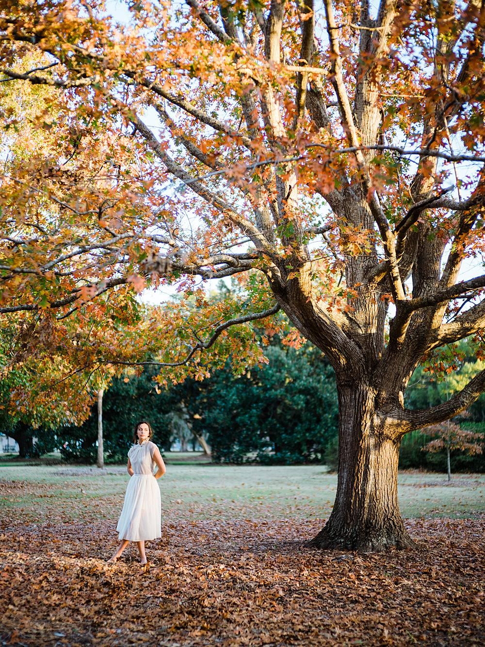 hampton park charleston south carolina lifestyle portrait with girl in vintage white dress underneath tree with fall colors by brian d smith photography