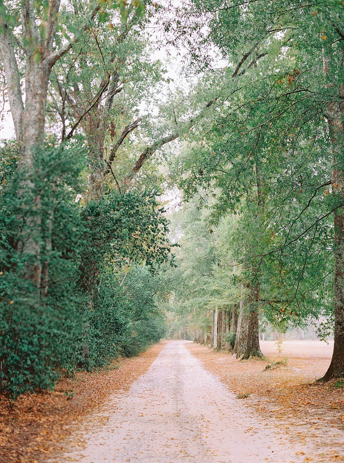 1909 charleston wavering place elopement wedding fall film southern styled 00029_web