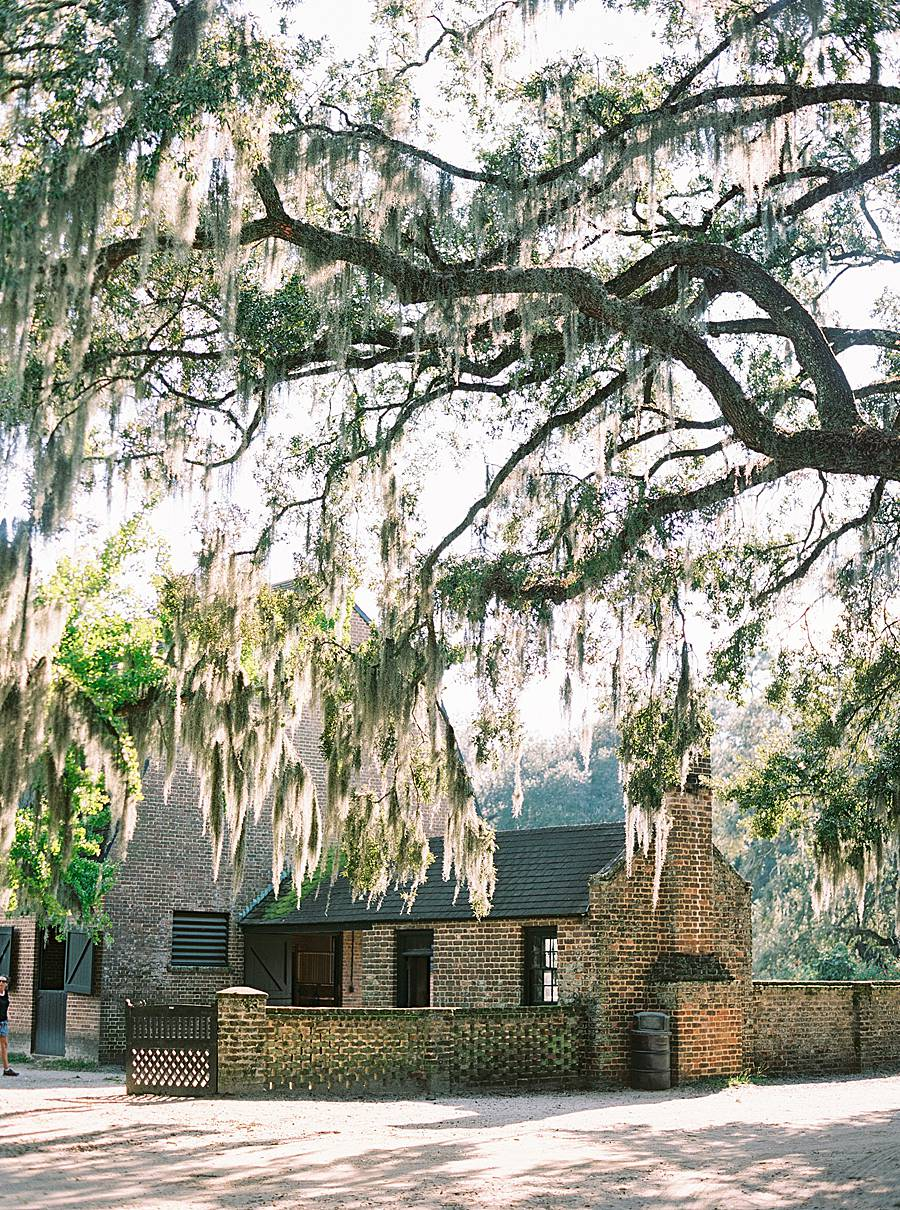 1810 middleton plantation charleston october wedding film 171_web_web