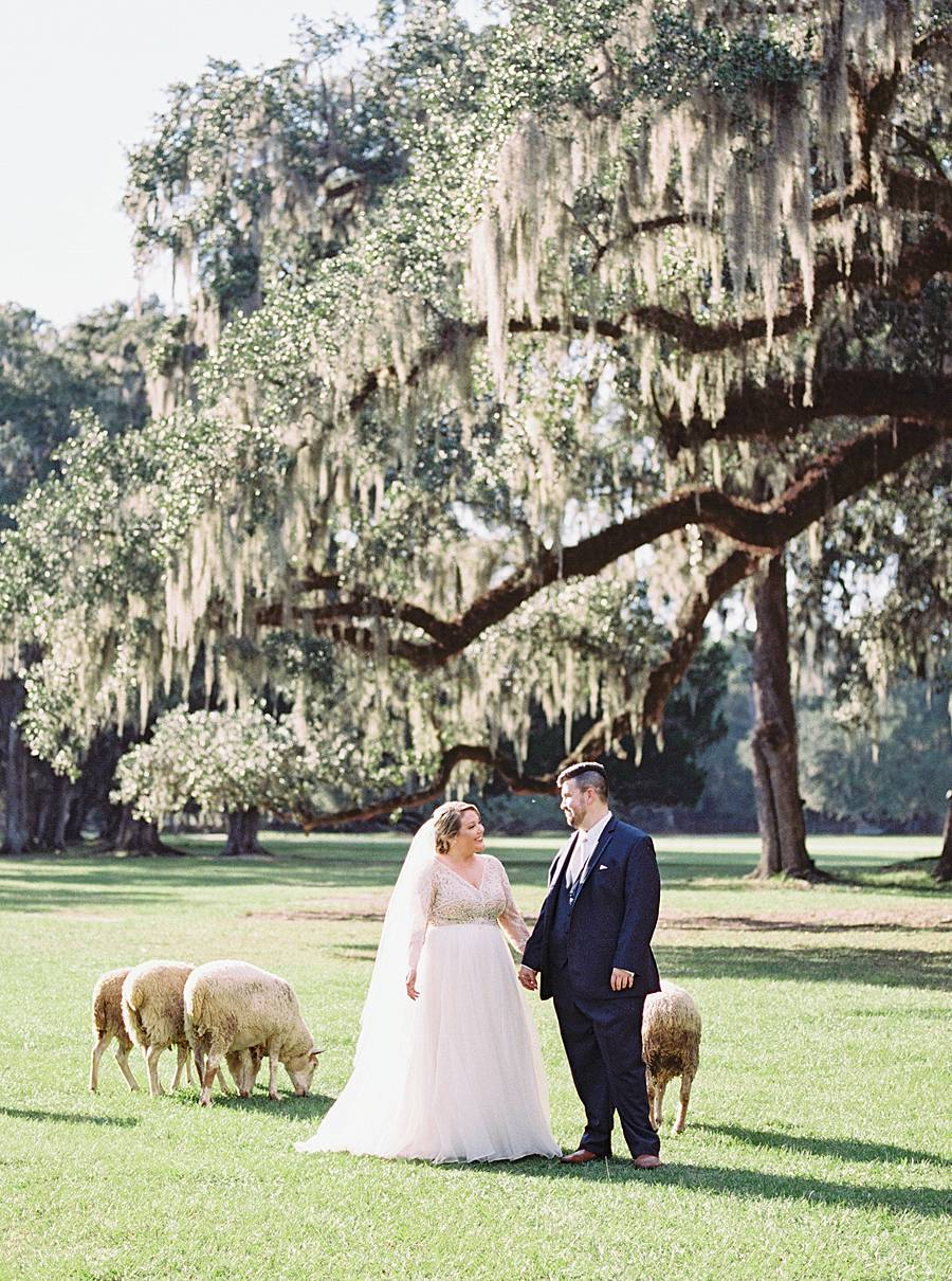 1810 middleton plantation charleston october wedding film 218_web_web