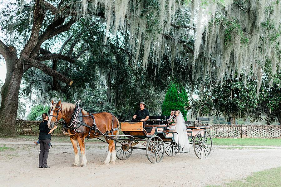 1810 middleton plantation charleston october wedding film 442_web_web