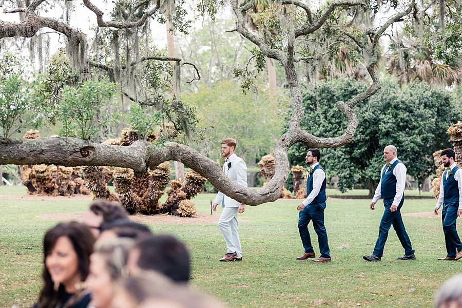 charleston cypress trees april wedding 194_web