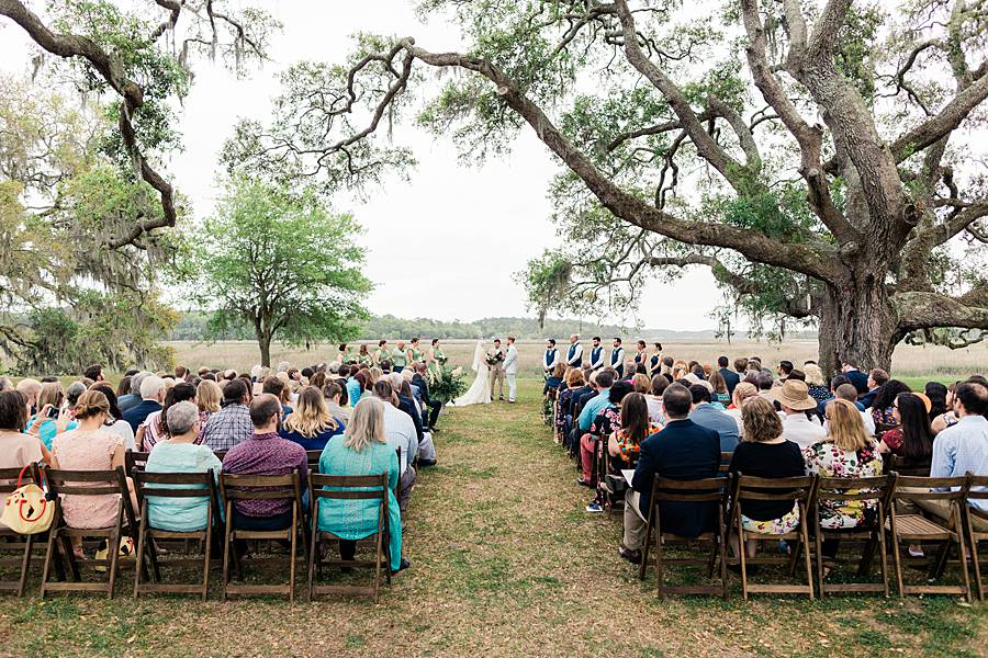 charleston cypress trees april wedding 222_web