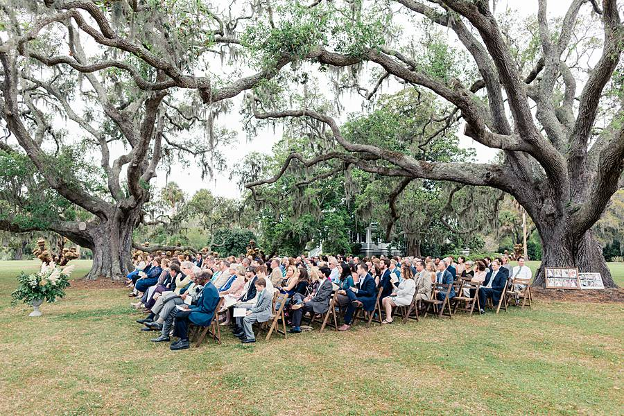 charleston cypress trees april wedding 232_web