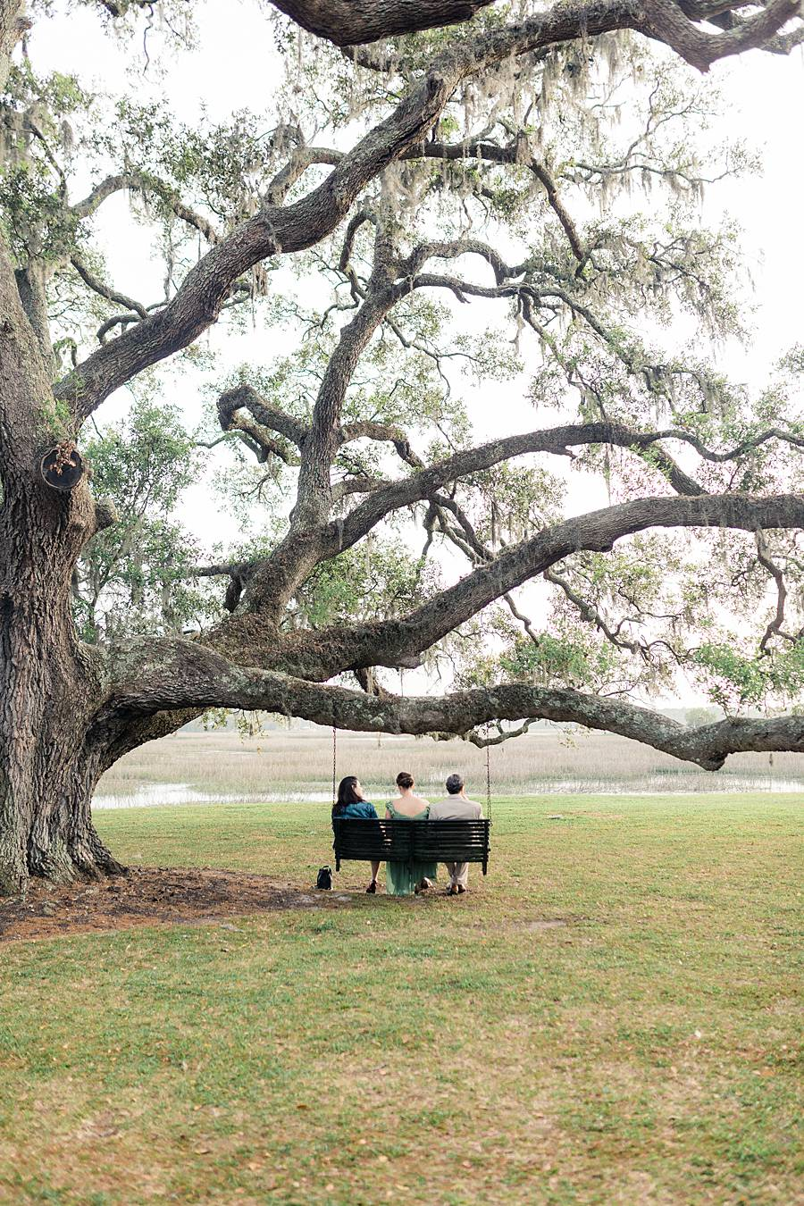 charleston cypress trees april wedding 412_web