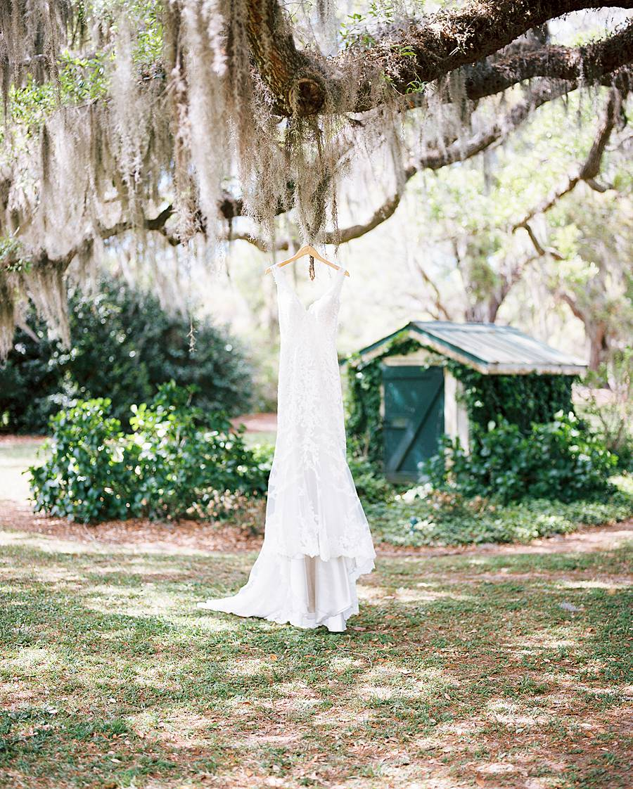 charleston cypress trees april wedding 46_web